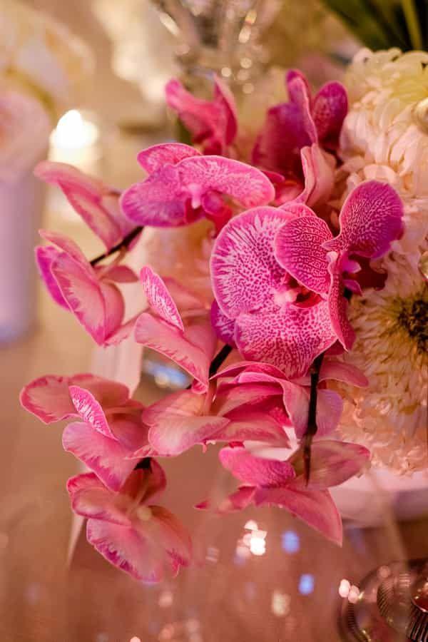 destination wedding - the aleit group  Destination wedding. Wedding ideas. Wedding flowers. Pink flowers. Okasie. Fleur le Cordeur. Molenvliet Wine Estate. South Africa.