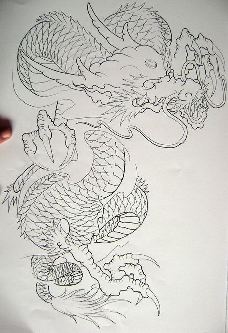 17 best images about m u tattoo on pinterest samoan for Japanese koi dragon