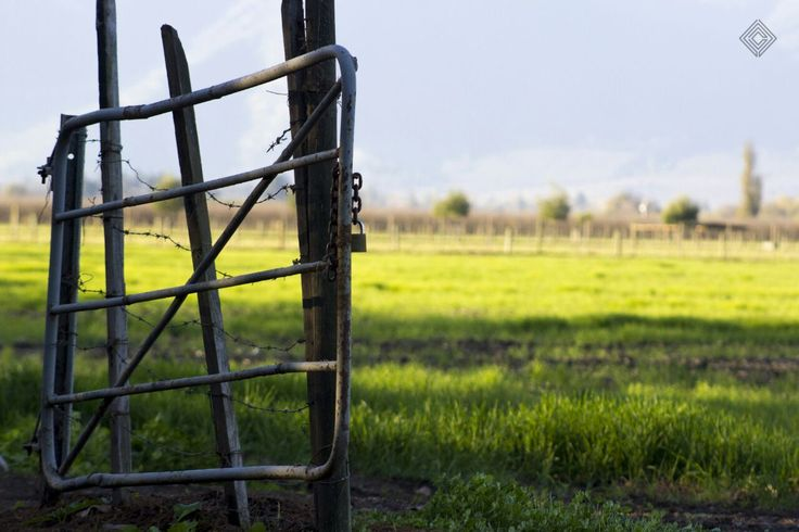 Cleytdesign - portón de campo
