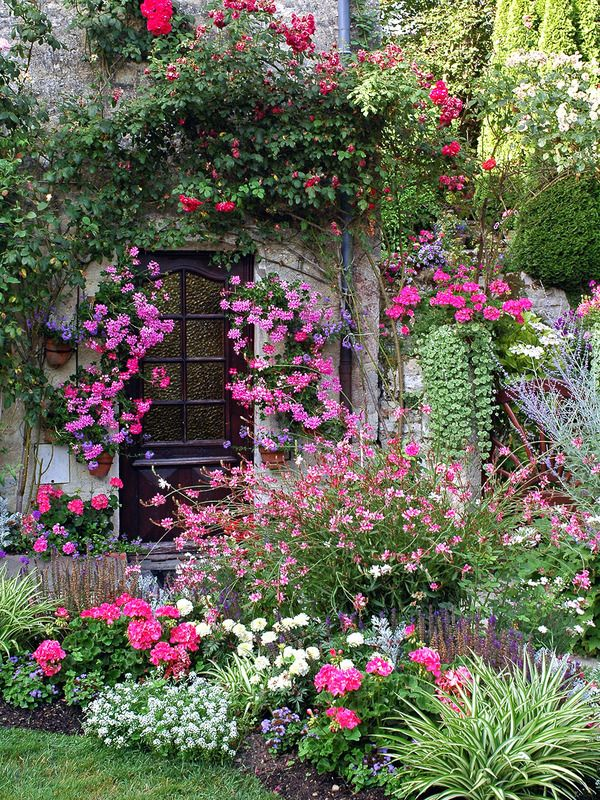 Beautiful Abundance Of Pink Flowers, Romantic Garden And Cottage