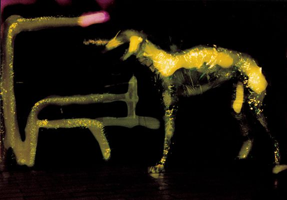 Joanna Zastrozna, photography, traditional chromogenic print, 1997.