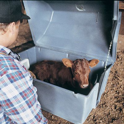 Roy L Heat Calf Warmer Box Animals Are People Too