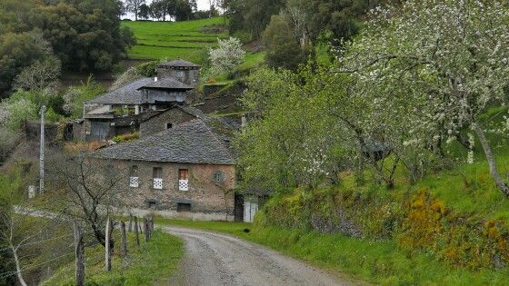 Arquitectura del Occidente Asturiano