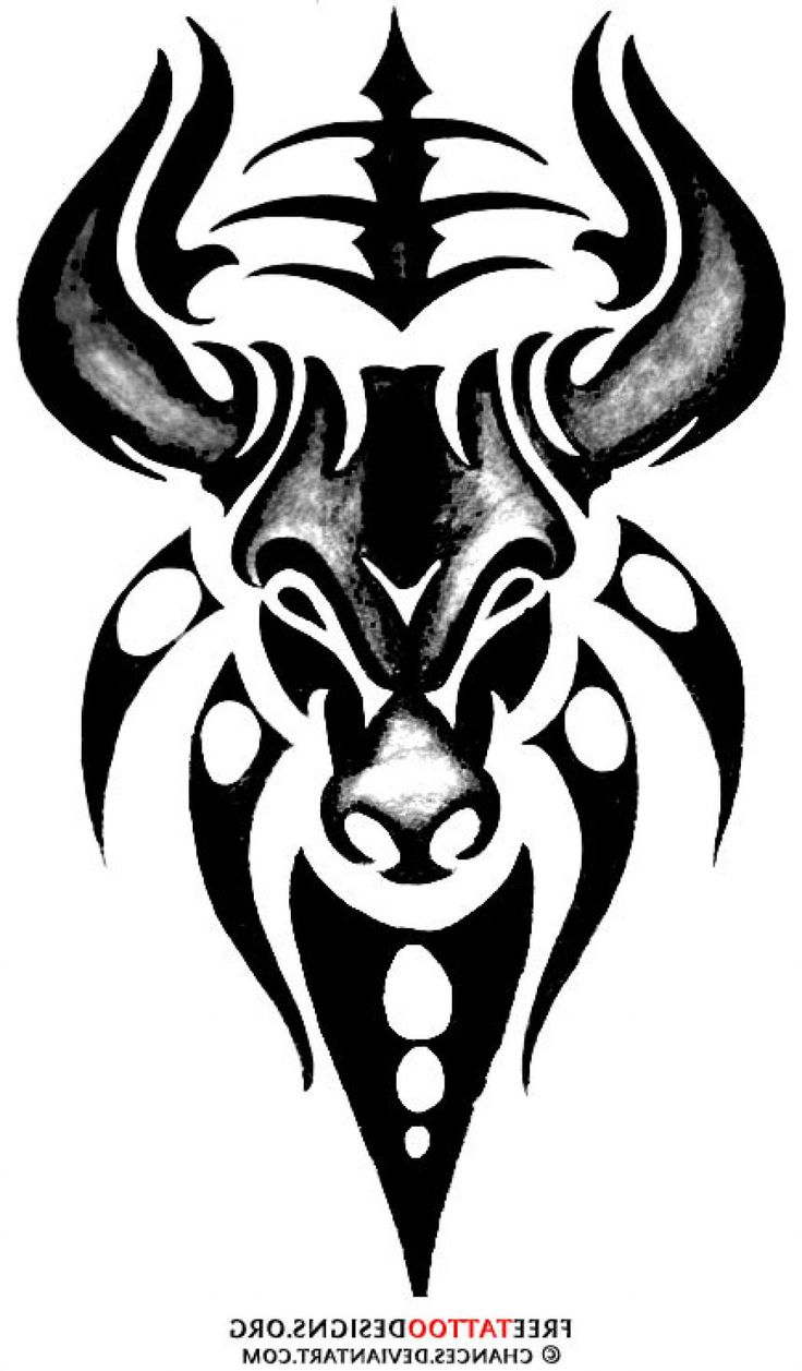 25 best tribal bull tattoo designs images on pinterest bull tattoos taurus bull tattoos and. Black Bedroom Furniture Sets. Home Design Ideas