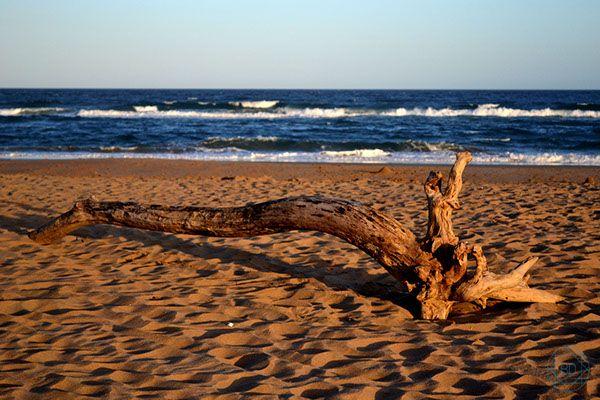 Sun, Sand & Surf - South Africa on Behance