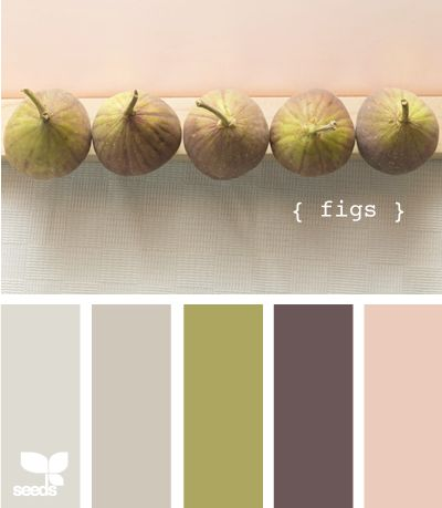 figs: Colors Pallets, Colors Combos, Design Seeds, Bedrooms Colors, Paintings Colors, Colors Palettes, Colors Schemes, Colour Palettes, Colors Inspiration