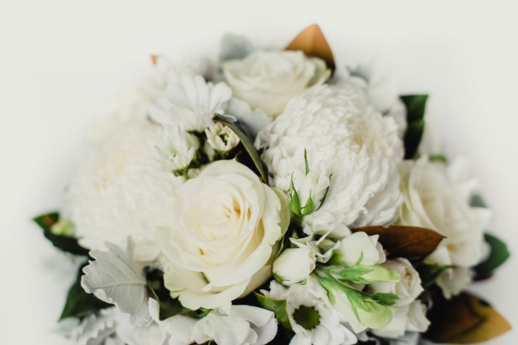 Posy of plush white and green flowers - Donvale Flower Gallery