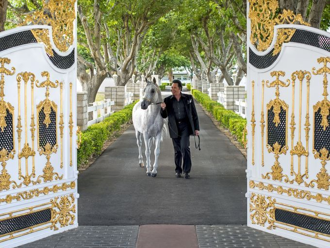 Wayne Newton walks a horse at the trademark white and