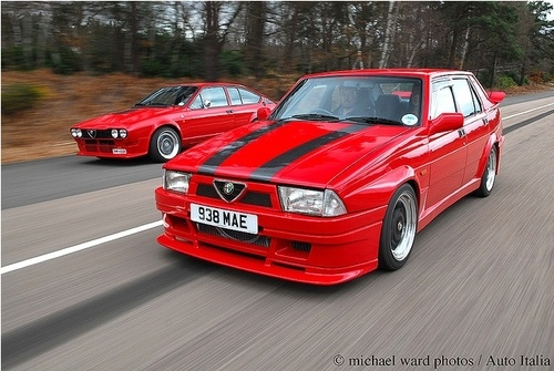 Beautiful Alfas. Red is the only colour really...