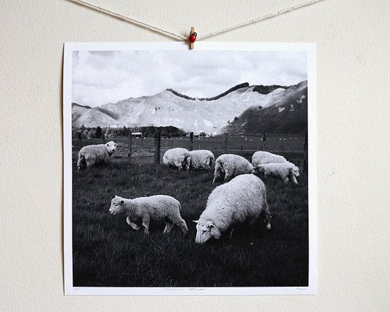 Whanganui  Afternoon by Pusha on Etsy