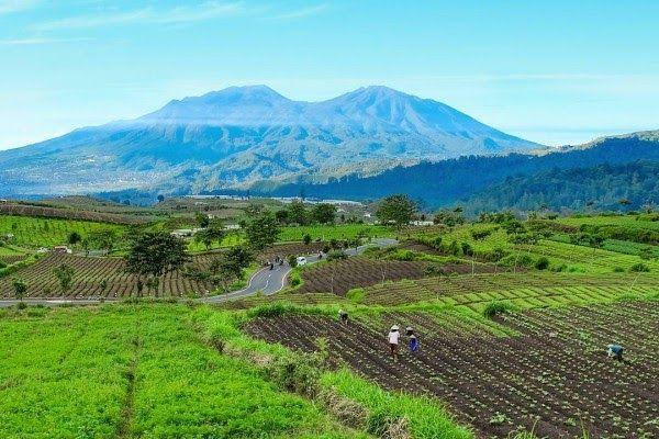 Pemandangan Pegunungan Di Indonesia di 2020   Pemandangan ...