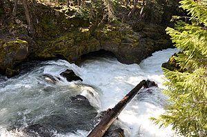 natural bridge campground prospect oregon - Google Search
