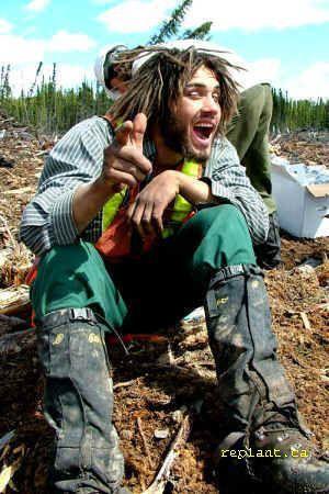treeplanter personality 1