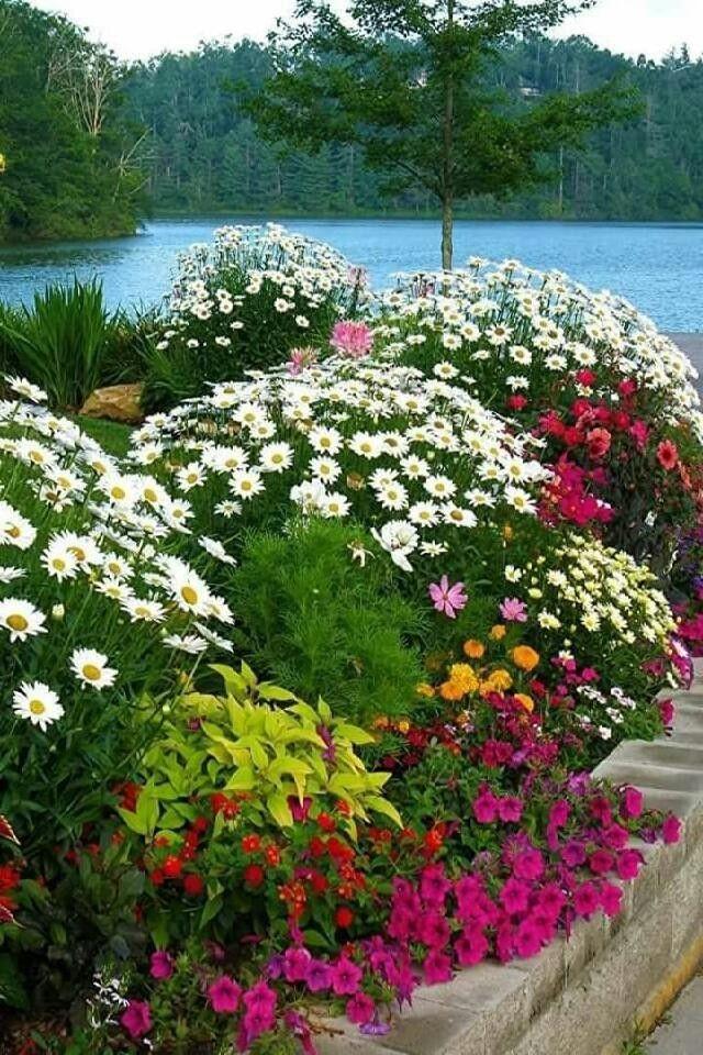Pin de pedro costantini en nuevo lugar Pinterest Paisajes - paisajes jardines