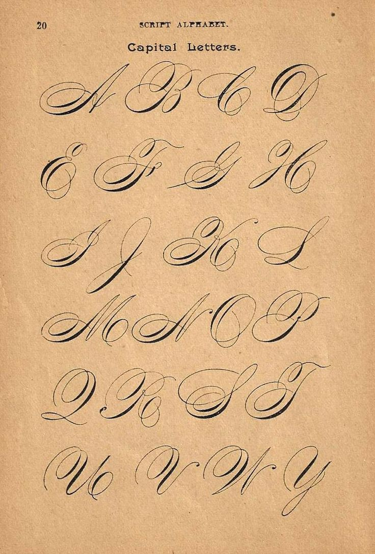 1890s Calligraphy Print Page Capital Letters by forloveofold