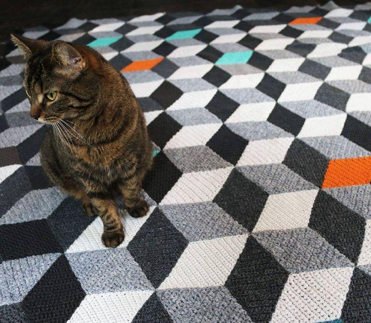 😼↗↗↙↙↘↘↖↖This perspective #crocheting #crochet #blanket #handmade #recycling #croche #vasarely #vasarelyblanket #opart #op_art #designe #design #designhome #cat #cats
