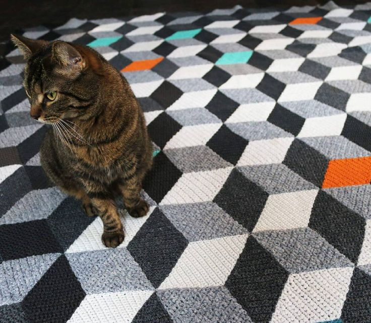 😼↗↗↙↙↘↘↖↖This perspective #crocheting #crochet #blanket #handmade #recycling #croche #vasarely #vasarelyblanket #opart #op_art #designe #design #designhome #cat #cats