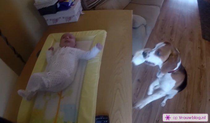 Hond helpt met luiers verschonen van baby