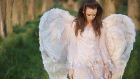 Andělská numerologie: Přečtěte si poselství svého ochránce