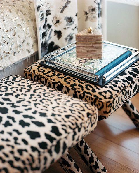 leopard print furniture images | Leopard Print Furniture Photo - A pair of leopard-print benches