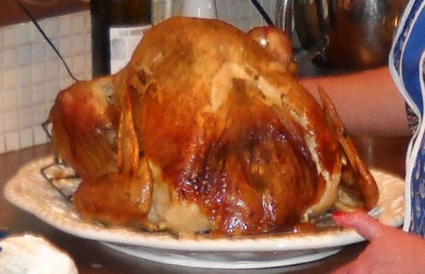 Perfect Turkey In An Electric Roaster Oven Recipe - Food.com