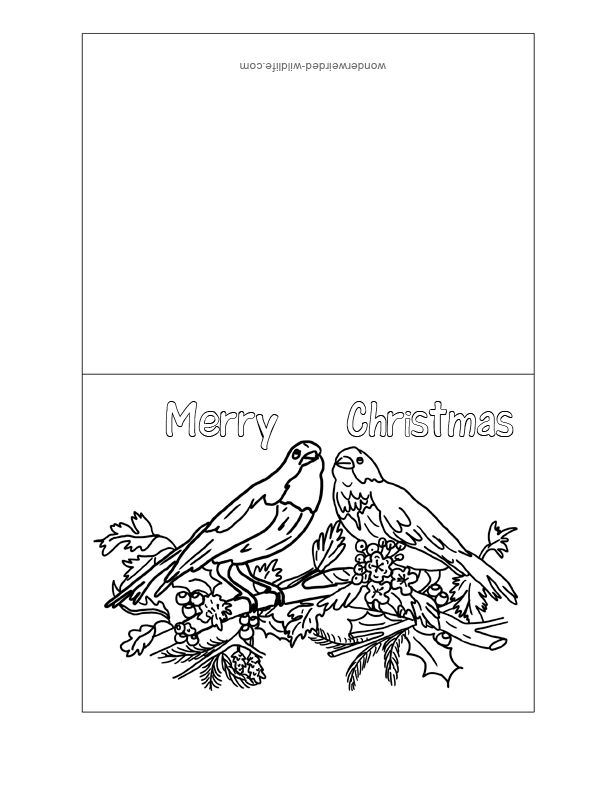20 best images about Christmas on Pinterest  Coloring pages Free