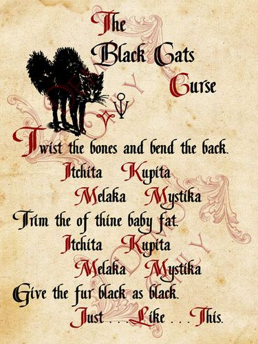 Black cats curse page - spell from Hocus Pocus