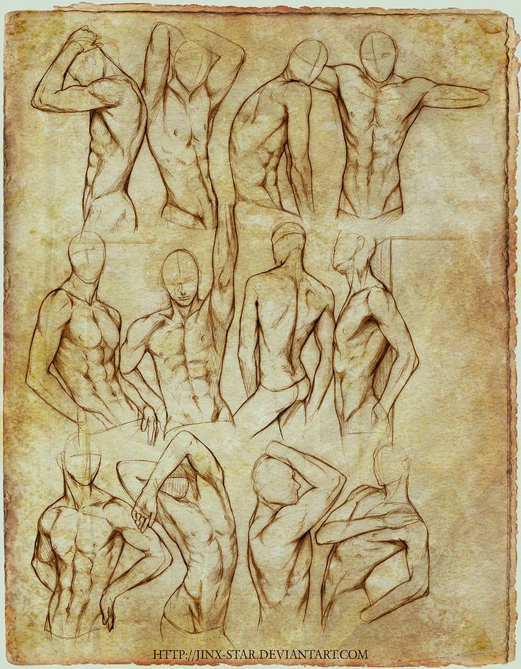 +MALE BODY STUDY II+ by =jinx-star on deviantART