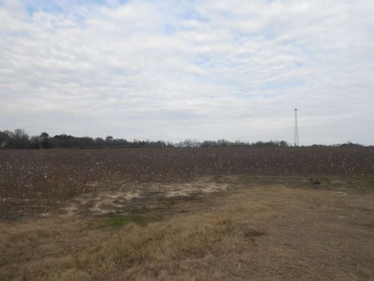 Featured Auction: 280 +/- Acres Cropland & Timberland in Georgia -blog.landflip.com #realestate #Realtor #land #auction