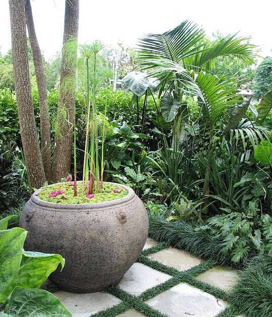 I just love Kavin King & Mark Yandall's garden, Herne Bay, NZ via Picasa  Un article ici dans Auckland Now