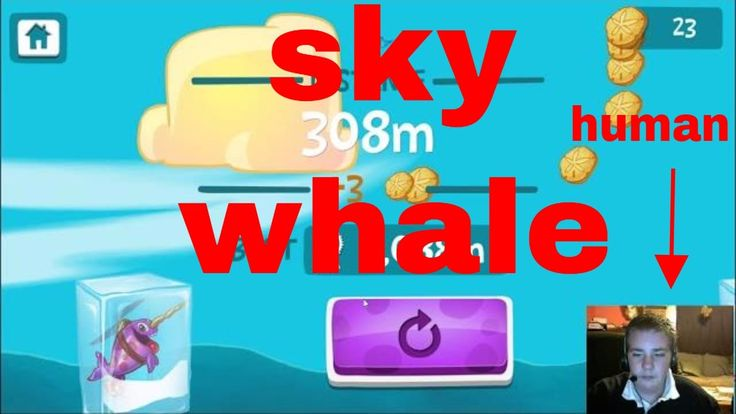I am a flying narwhal | sky whale