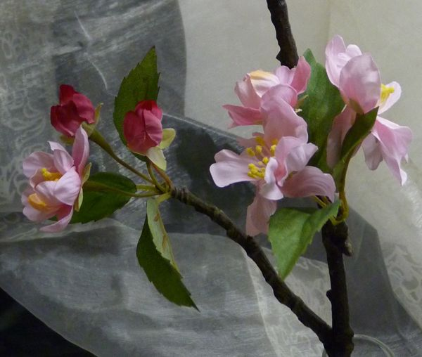 Kirschblüten-Zweig