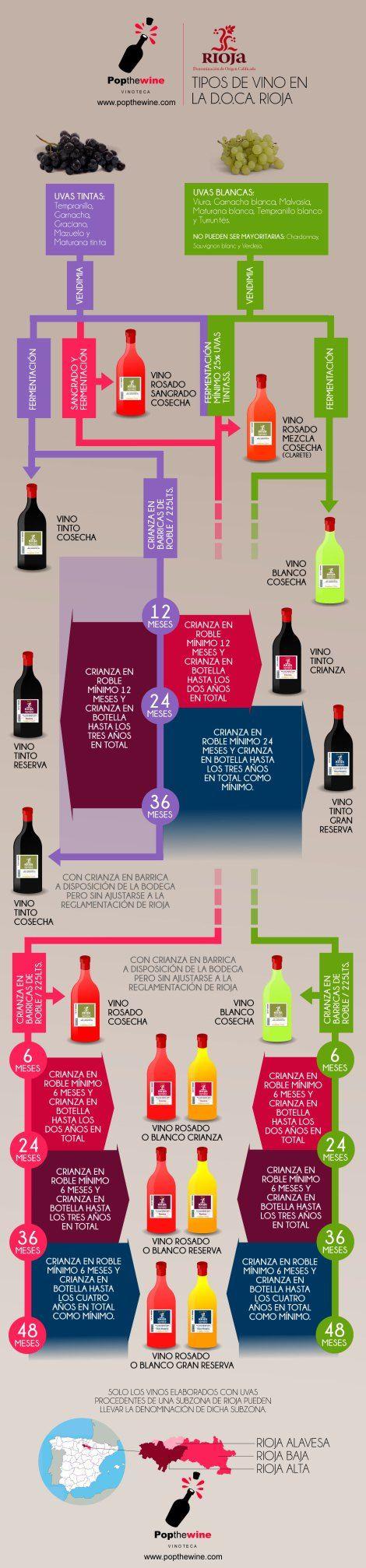 Infografía sobre los diferentes tipos de vino que encontramos en la Denominación de Origen Rioja.