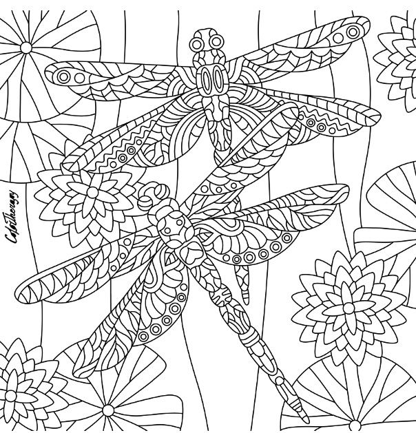 769 best Animal Coloring Pages for Adults images on