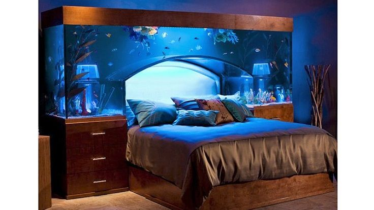 A cool way to invest in your bedroom. Why not sleeping with the ocean for a while? These aquariums are custom made and are worth the money. Who ever thought of this is obviously a genius, imagine waking up every morning with water and exotic fish beneath you