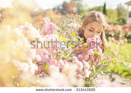 smell of the flower - stock photo