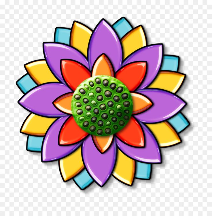 Petal floral design flower seed clip art seedpod of the
