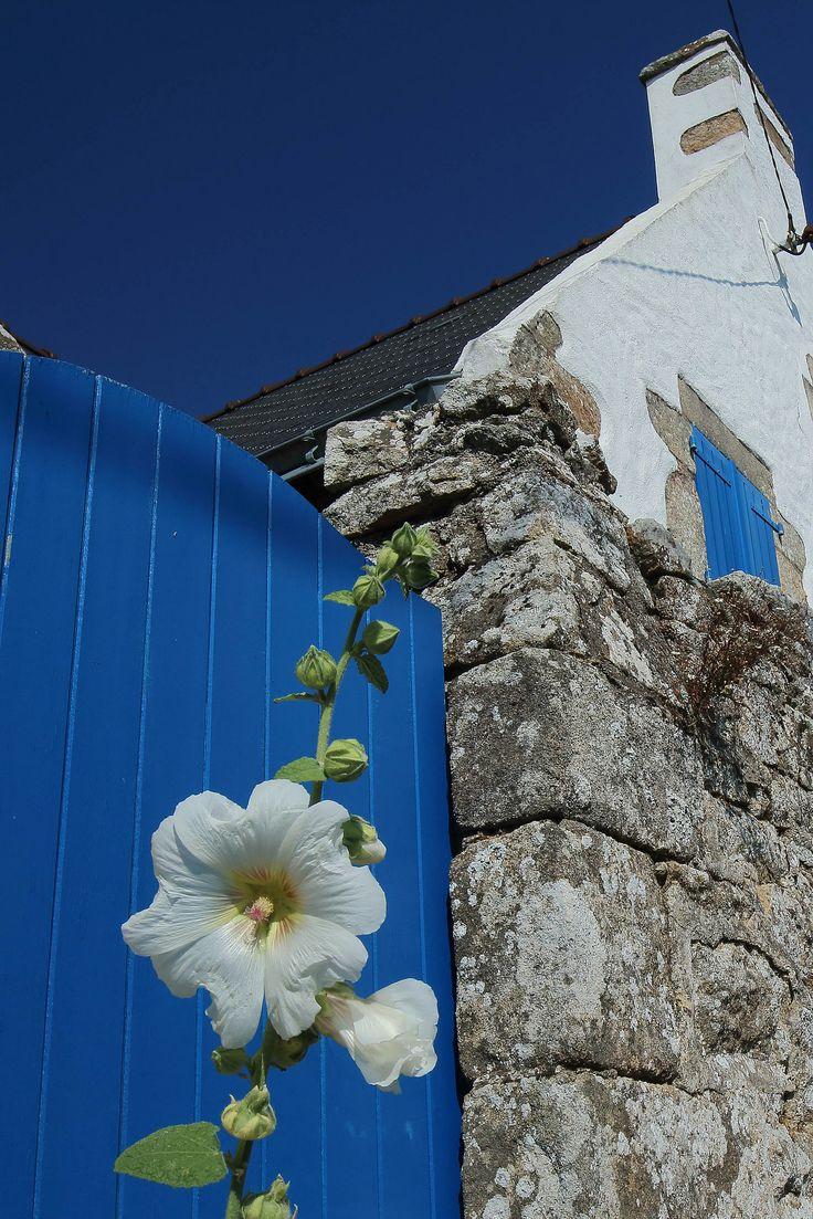 Bleu et Blanc. Golfe du Morbihan.