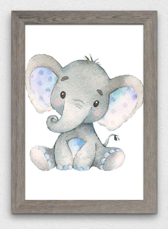 Baby Boy Elephant Poster Print 24 By 36 And 20 By 30