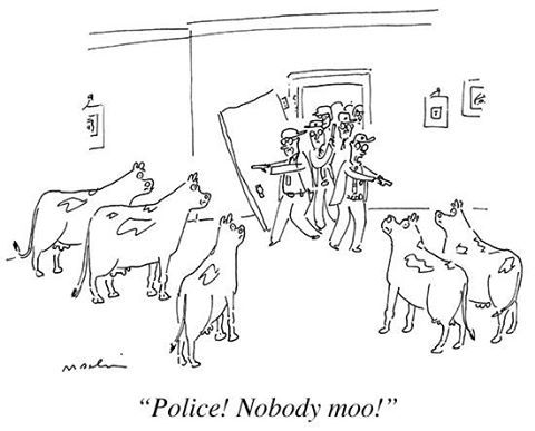 The New Yorker Cartoons's photo.