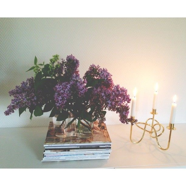 It's raining outside this morning but for me it doesn't matter because I have these lovely lilacs at home #lilac #lilacs #syren #syrener #lilasyren #vitsyren #flower #flowers #summerflowers #magazine #magazines #iittala #alvaraalto #aalto #svenskttenn #joseffrank #vänskapsknuten #brass #interior #interiör #design #style #deco #decor #whiteinterior #homeinterior #interiordesign #scandinaviandesign #Padgram
