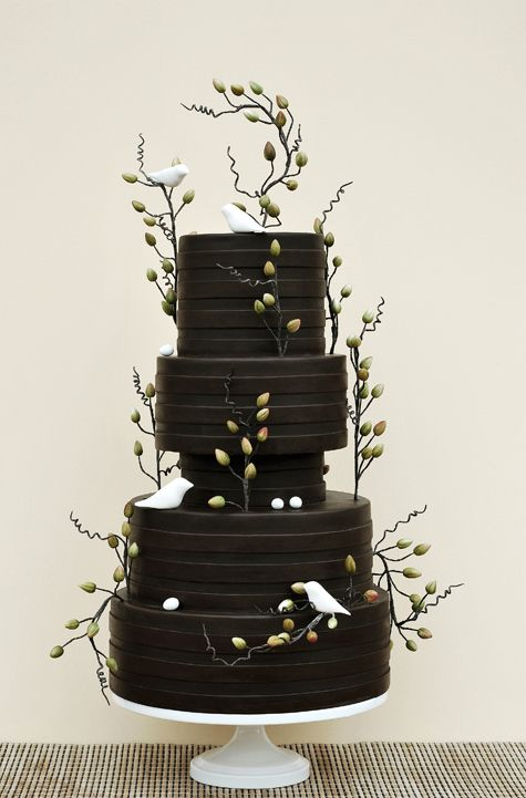 Beautiful Chocolate brown cake with branches placed all around it.  Large & fancy!