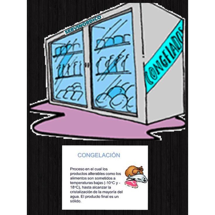 Ventas  congeladores  3128721479