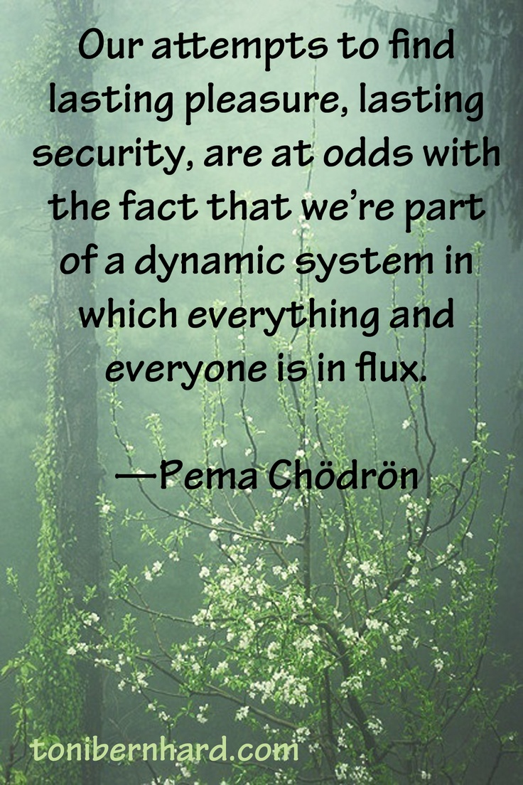 """Our attempt to find lasting pleasure, lasting security, are at odds with the fact that we're part of a dynamic system in which everything and everyone is in flux."" ~ Pema Chödrön"