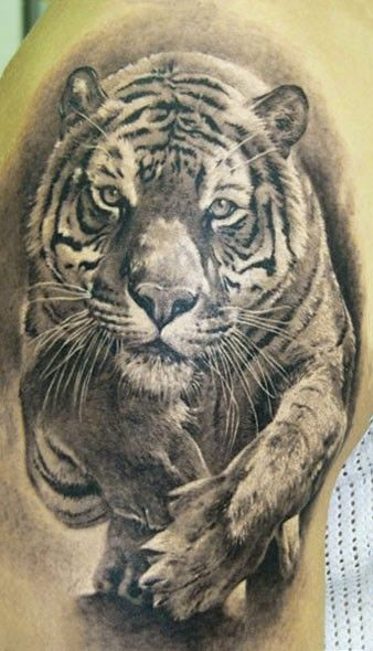 Superior designed realistic black and white running tiger tattoo on shoulder