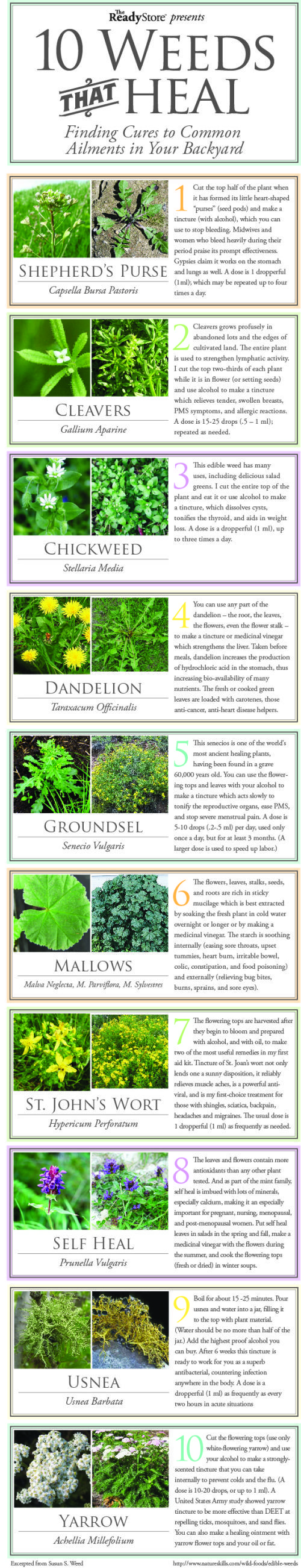 10 common weeds that can heal you. Another one to print out and use as a Book Marker.