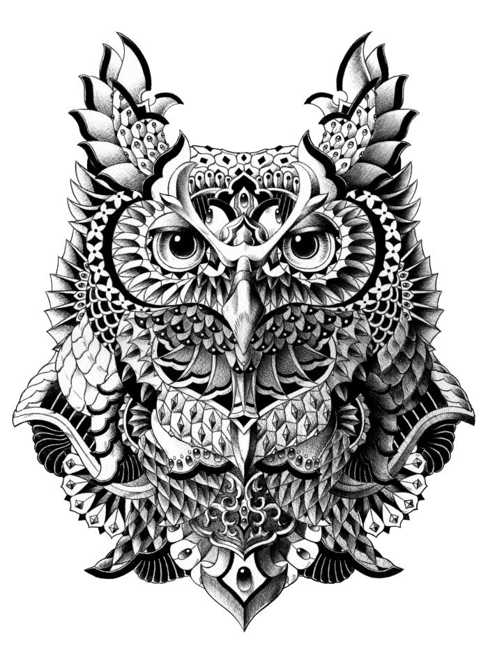 century owl art print by bioworkz black and white art drawing of owl with patterns illustration tattoos drawings art