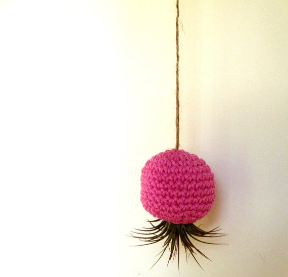 Knitted Air Plant Holder