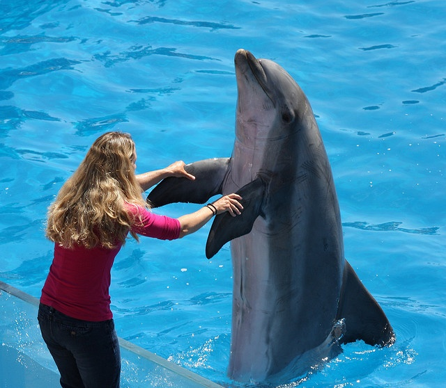 May I have this dance? A girl and a dolphin share a waltz at SeaWorld in San Diego.