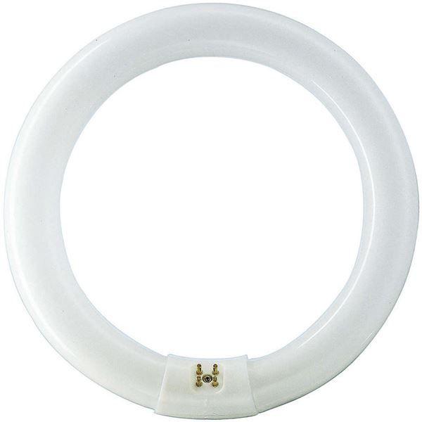 Tub fluorescent circular Philips MASTER TL-E Circular 40W/865, G10q, tub C-T9, 9000 ore, lumina rece, 872790084057500 http://www.etbm.ro/tuburi-fluorescente-circulare